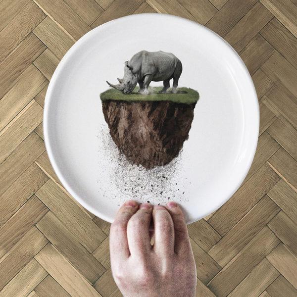 rinoceronte3