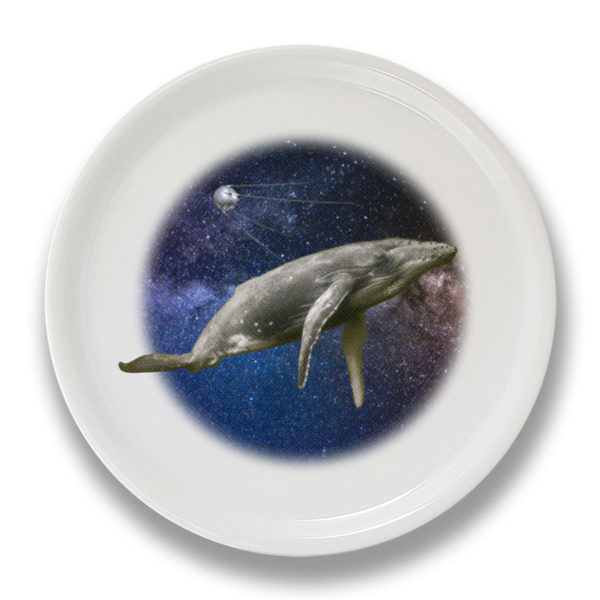 whale-in-the-space